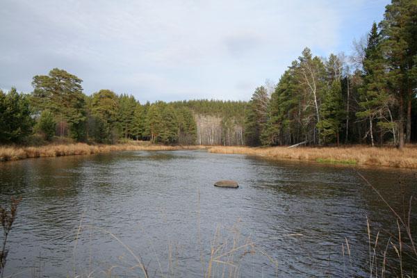 сплав по реке Реж